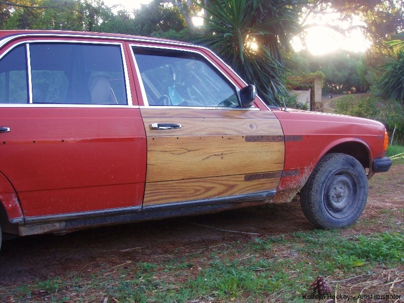 wooden-car-door-kathryn hockey artist illustrator