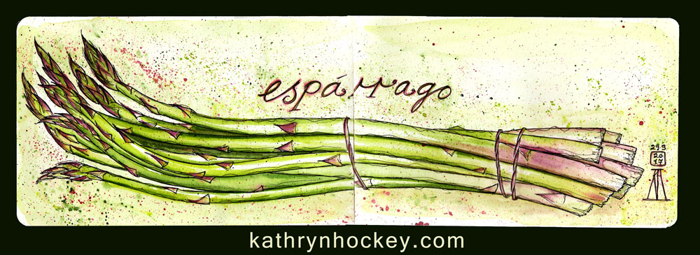 esparrago-kathryn-hockey-artist-illustrator-web-1