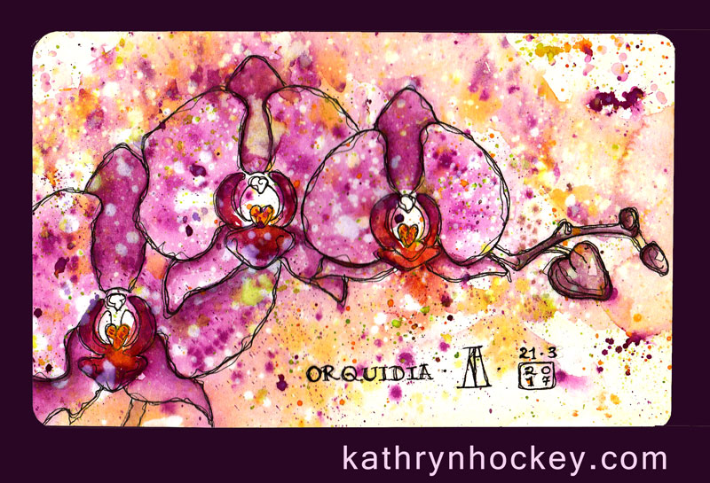 orchid-kathryn-hockey-artist-illustrator-web