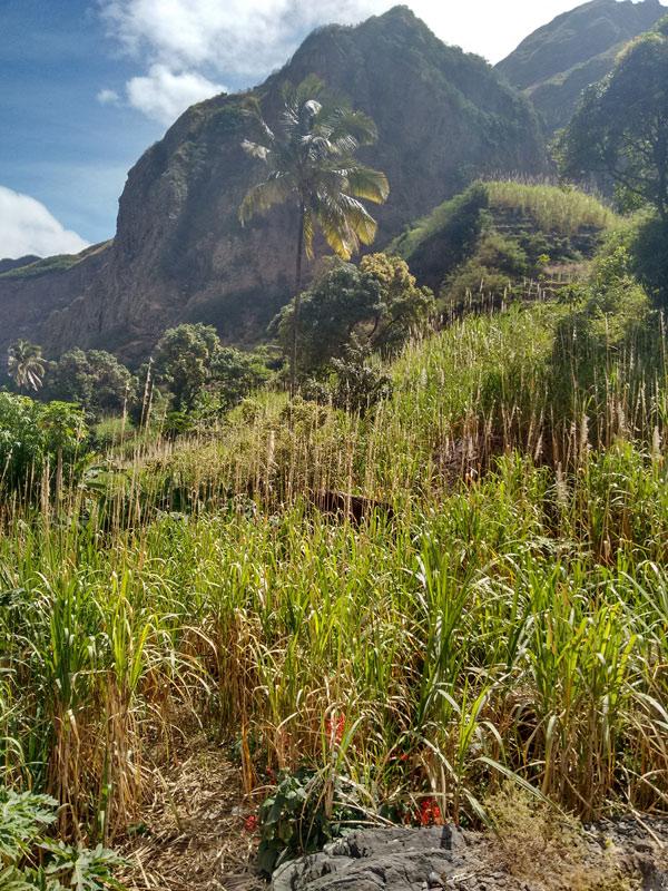 chez hujo, paul valley, santo antao, cape verde, cabo verde, africa