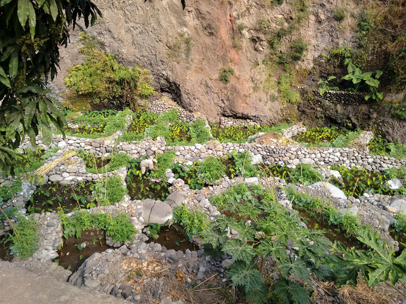 paul valley, santo antao, cape verde, cabo verde, africa, river, terracing