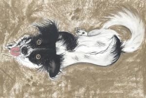 dog, pet, portrait, chalk, charcoal