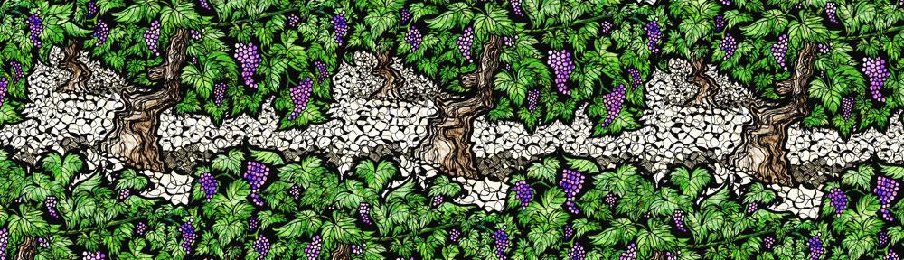 grapevine, pen drawing, digital collage, pattern, illustration