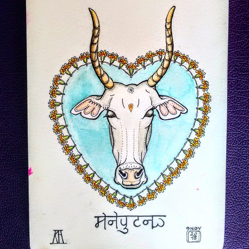 holy, cow, sacred cow, holy cow, pen, watercolour, drawing, painting, watercolor, sketchbook, travel, India, rajasthan, udaipur, marigolds