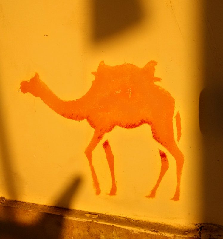 camel, stencil, painting, mural, illustration, repeat, acrylic paint