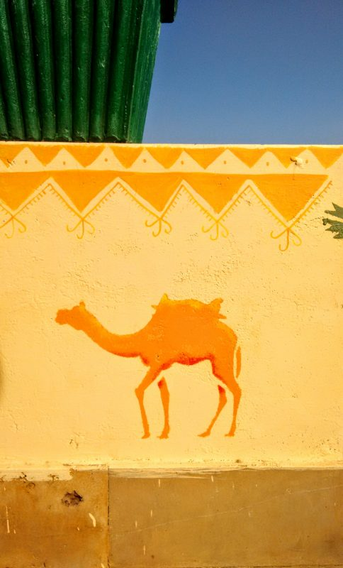 wonbin safari hostel, roof terrace, jaisalmar, rajasthan, India, camel, decorative painting, mural, wall art, wall painting, folk art, acrylic paint, illustration, stencil, camels