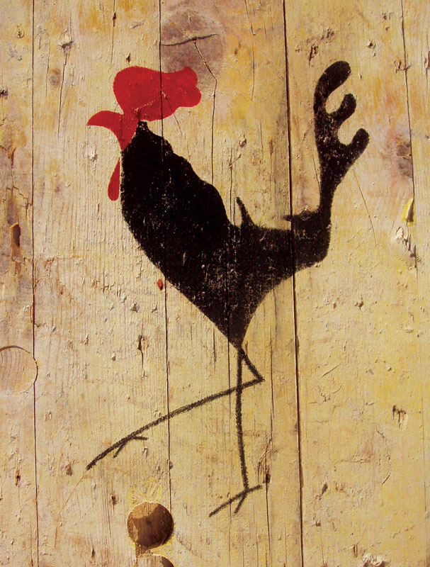 Rooster-postcard-web