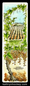 grape harvest, andalucia, sherry, jerez, bodegas faustino gonzalez, pen and wash, pen and watercolour, pen and watercolour, sketch