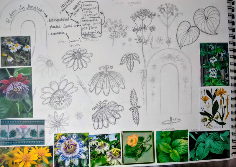 research, arch, mural, drawing, plants, flowers, illustration, valerian, chamomile, passion flower, kava, herbalism, natural remedies, calm, tranquillising, tranqullizing, stress relief, botanical, pharmacy, sketchbook