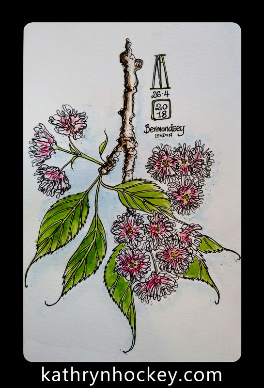 spring, blossom, flowers, pen and watercolour, watercolour, water color, acuarela, sketch, illustration