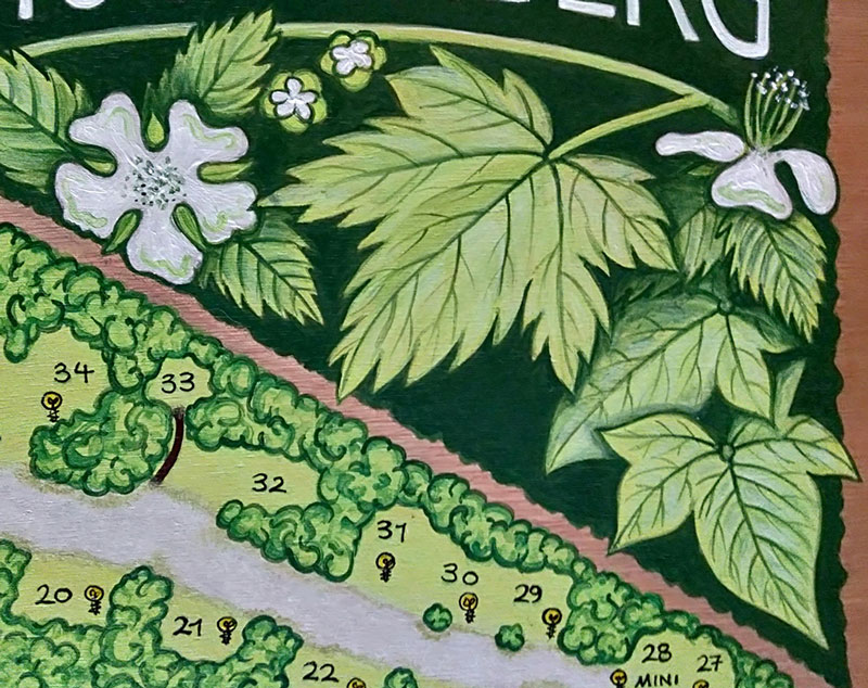 handpainted sign, signwriting, map, map making, campground, forest, woodland, camping schoonenberg, driehuis, north holland, holland, acrylic paint, wood, illustration, leaves, brambles, sign, painting, art