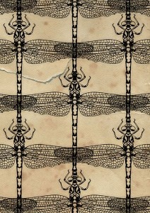 dragonflies, dragonfly, digital collage, pattern, illustration