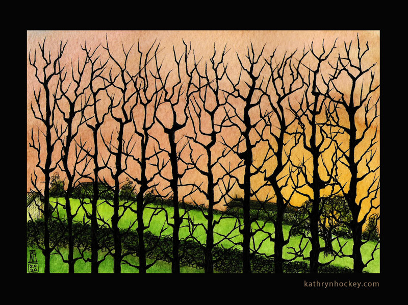hybrid black poplar, trees, poplar, winter, essex, countryside, silhouette, drawing, sketchbook, landscape, illustration, watercolour, watercolor, painting, sunset