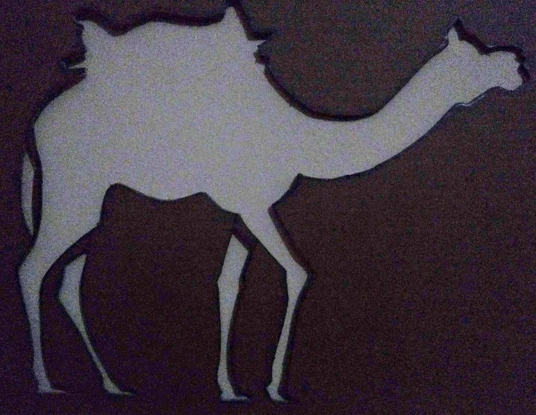 camel, stencil, cutting, drawing, cardboard