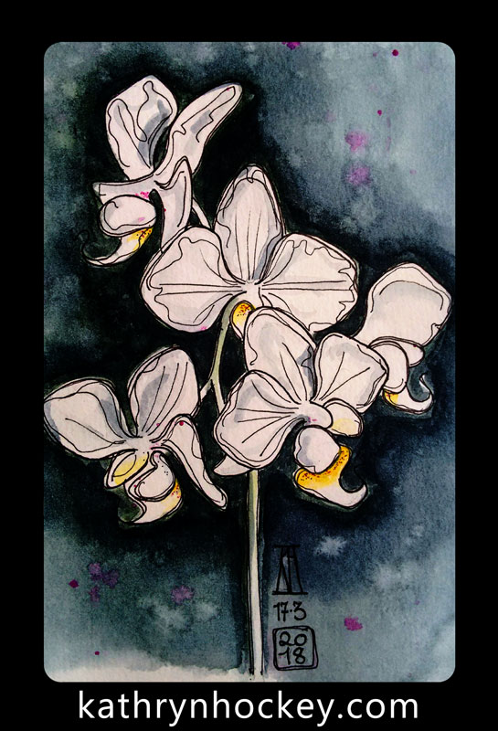 orchid, flowers, pen and watercolour, watercolour, water color, acuarela, sketch, illustration