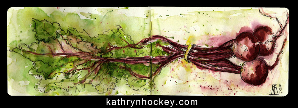 beetroot, remolacha, food, vegetable, drawing, water colour, sketch, pen and watercolour