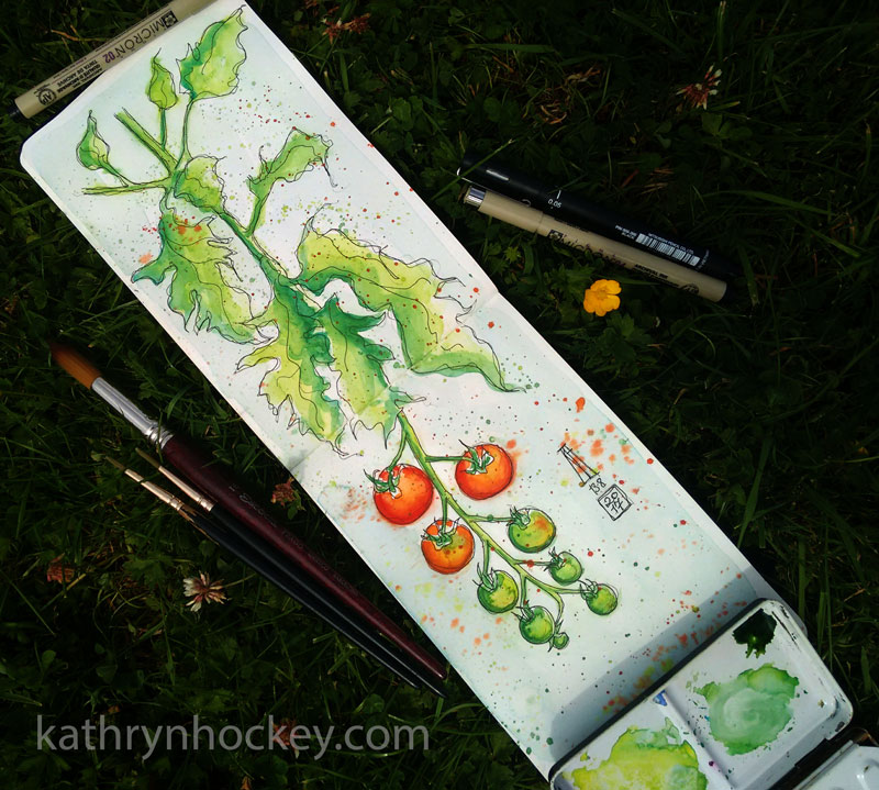 tomato, tomatoes, on the vine, greenhouse, summer, fruit, pen and watercolour, watercolour, water color, acuarela, sketch, food, illustration