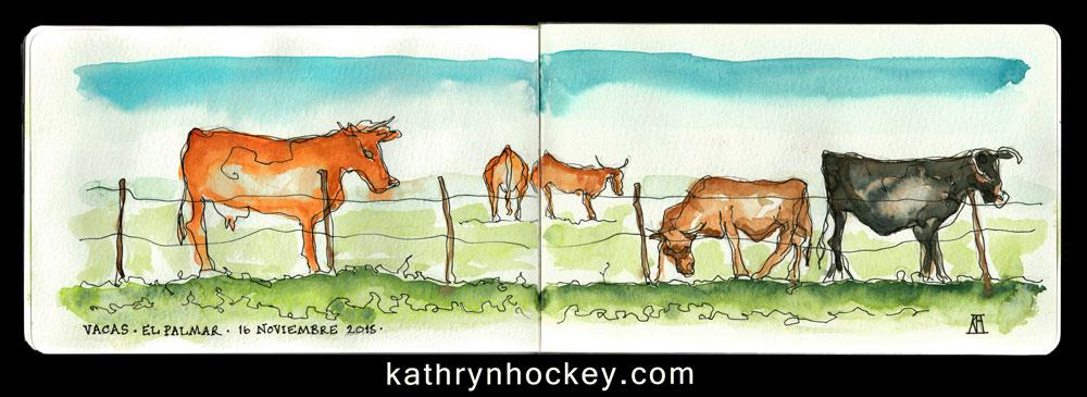 cows, vacas, el palmar, andalucia, vejer de la frontera,, watercolour, watercolor, sketch, drawing