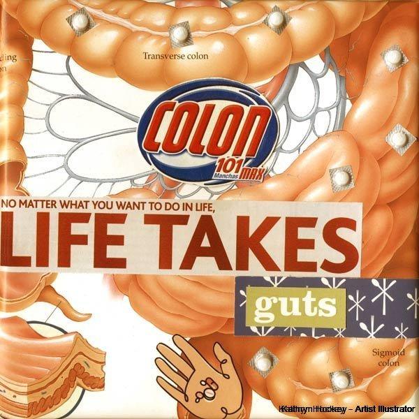 life-takes-guts-kathryn-hockey-artist-illustrator