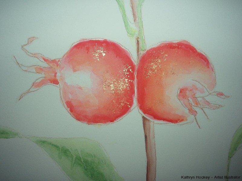 pomegranate mural-detail-kathryn hockey artist illustrator