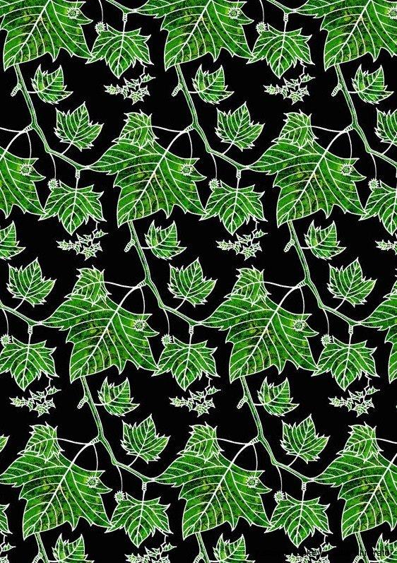 plane-tree-1-kathryn-hockey-artist-illustrator-web