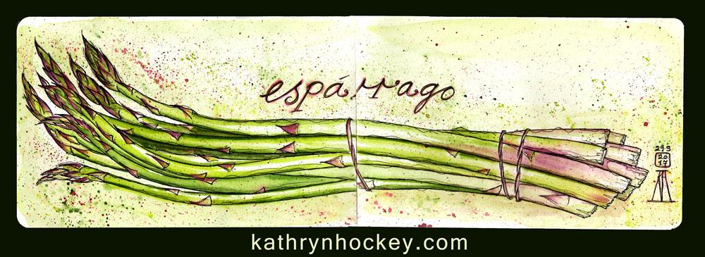esparrago-kathryn-hockey-artist-illustrator-web-1