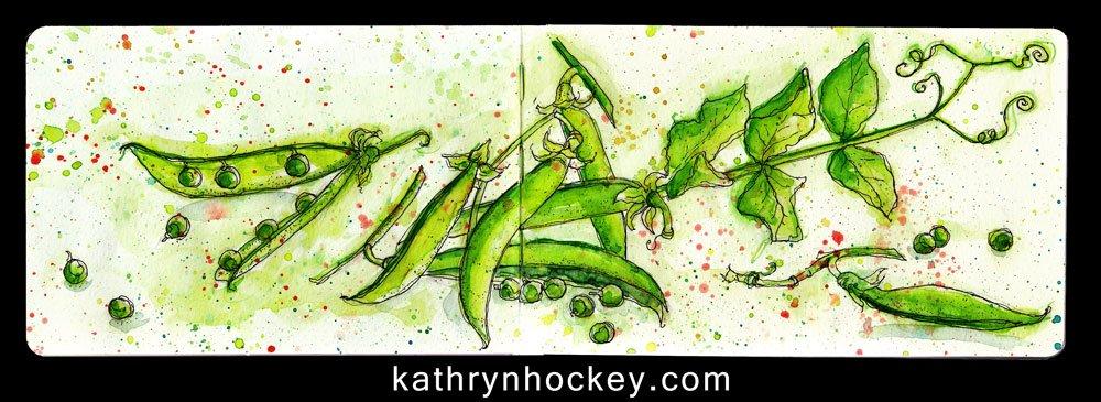 peas-17.4.16-kathryn-hockey-artist-illustrator-web