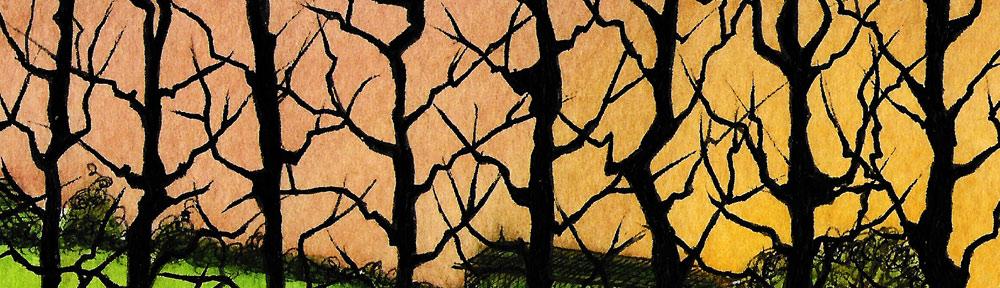 hybrid black poplar, trees, poplar, winter, essex, countryside, silhouette, drawing, sketchbook, landscape, illustration, watercolour, watercolor, painting, sunset